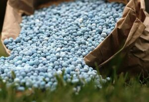 Рост цен на фосфорные удобрения